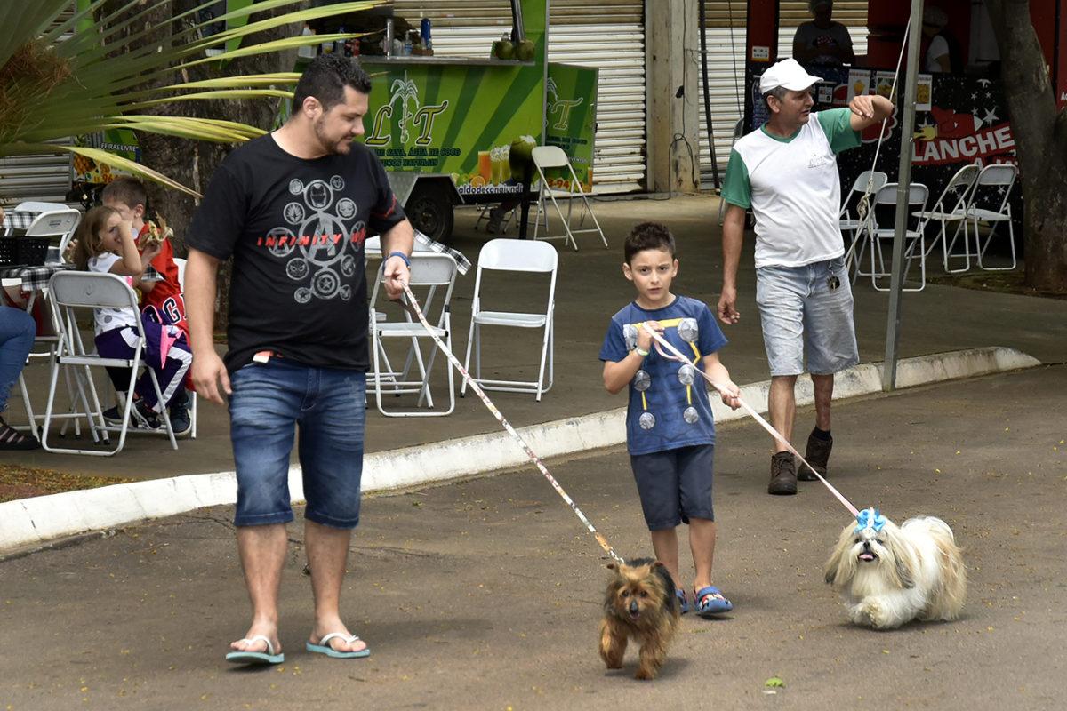Um homem e um menino passeando com os cachorros no parque